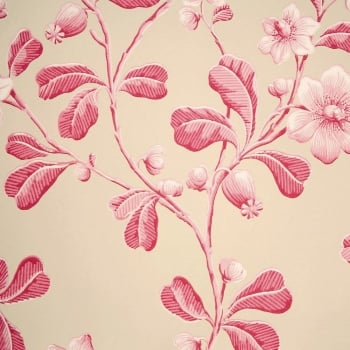 Little Greene Broadwick St - Rosea