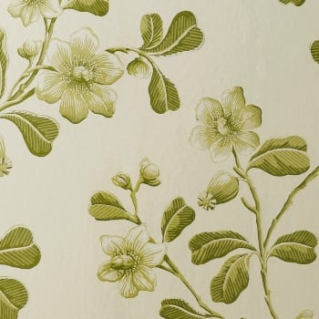 Little Greene Broadwick St - Garden