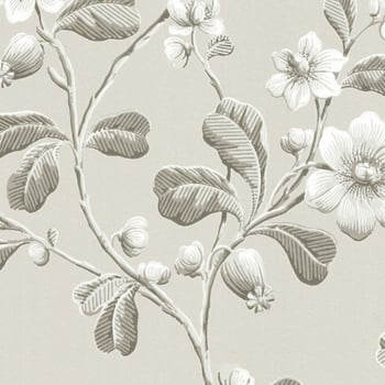 Little Greene Broadwick St - Pitch